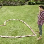 Be a Sweetheart to Your Lawn This Valentine's Day!