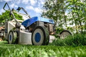DYI Lawn mowing vs profession lawn service